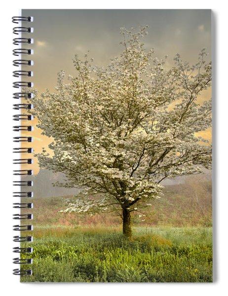 Morning Celebration Spiral Notebook