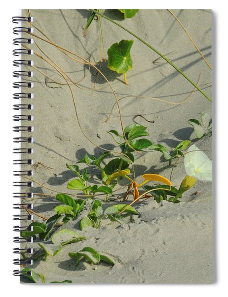 Morning Glory At The Beach Spiral Notebook