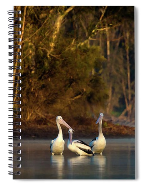 Morning On The River Spiral Notebook