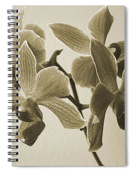 Morning Orchid Spiral Notebook