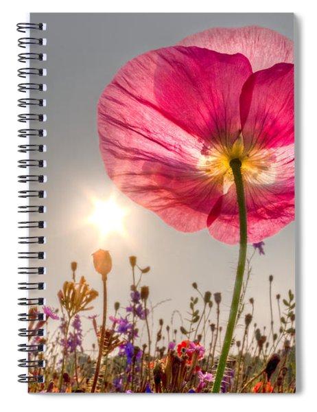 Morning Pink Spiral Notebook