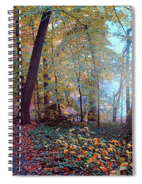 Morning Walk Spiral Notebook