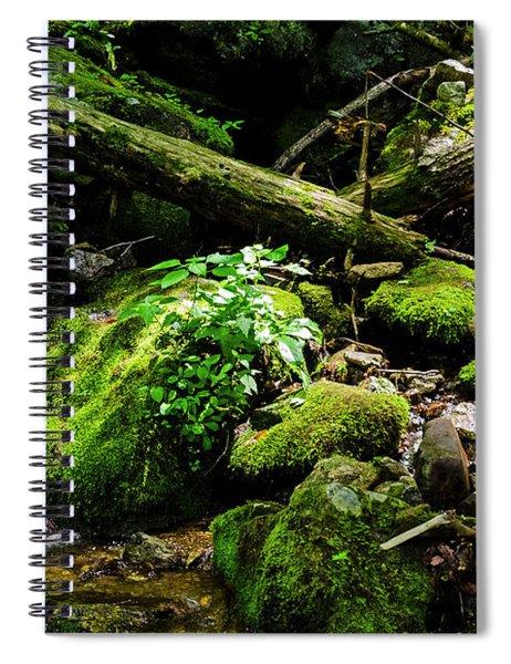Moss At Wigwam Falls Spiral Notebook
