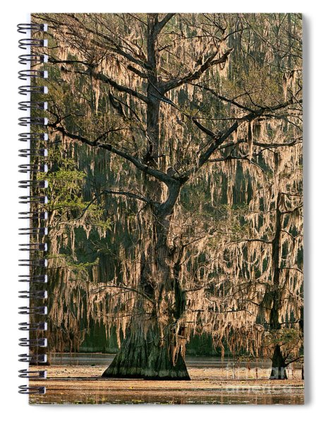 Moss Draped Cypress Caddo Lake Texa Spiral Notebook
