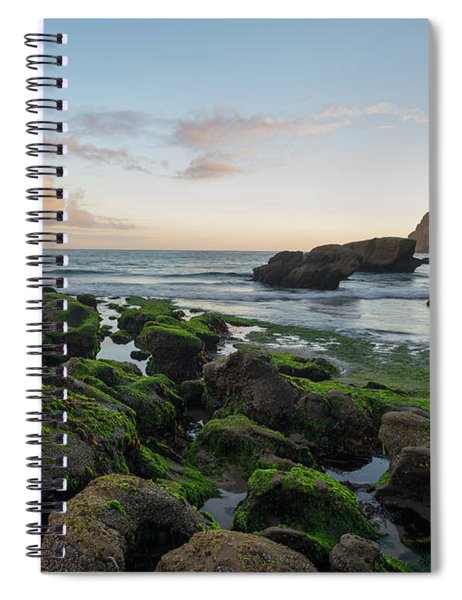 Mossy Rocks At The Beach Spiral Notebook