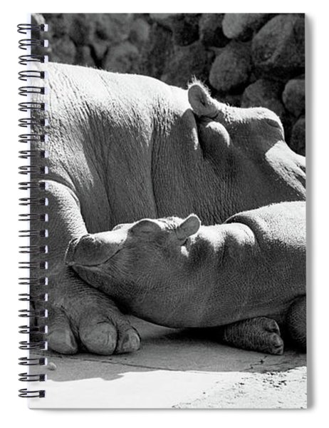 Mother And Baby Hippos Spiral Notebook