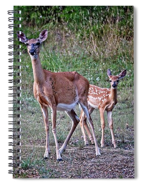 Mother And Fawn Spiral Notebook