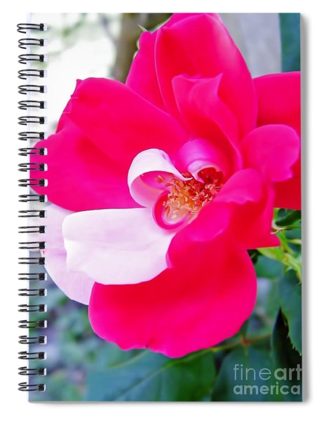 Mother - Natures - Best Spiral Notebook