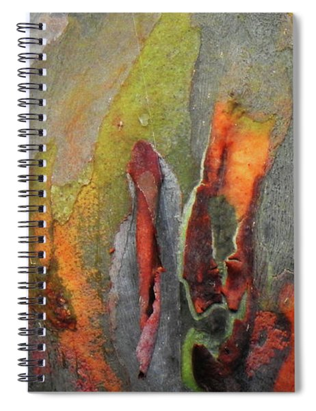 Mother Nature's Water Color Spiral Notebook