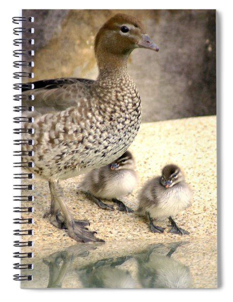 Mother Of Twins Spiral Notebook
