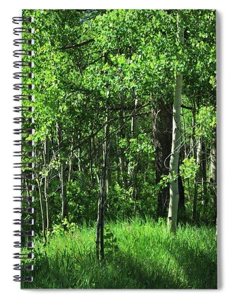Mountain Greenery Spiral Notebook