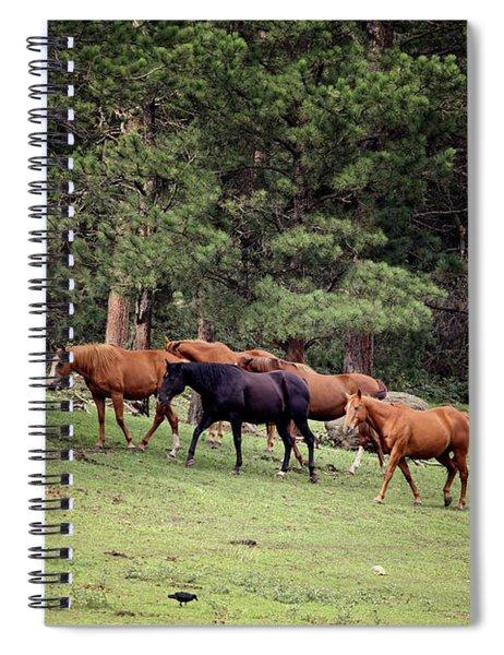 Mountain Horses Spiral Notebook