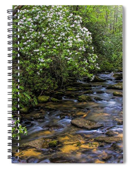 Mountain Laurels Light Up Panther Creek Spiral Notebook