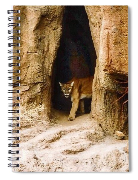 Mountain Lion In The Desert Spiral Notebook