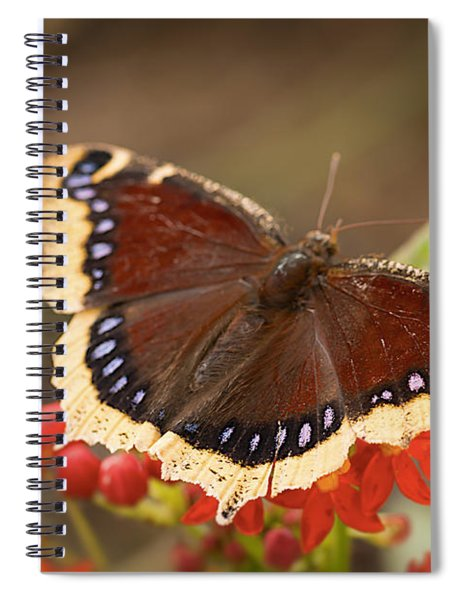 Mourning Cloak Butterfly Spiral Notebook
