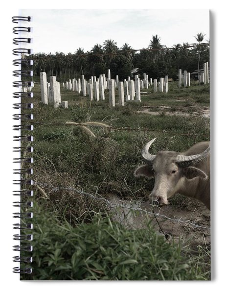 Mourning In The Palm-tree Graveyard Spiral Notebook