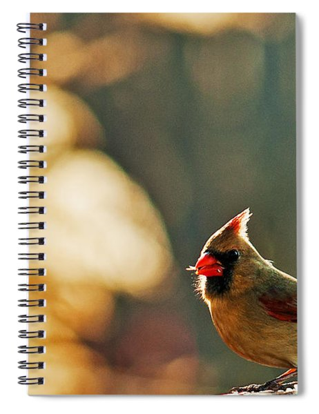 Mouthful Spiral Notebook