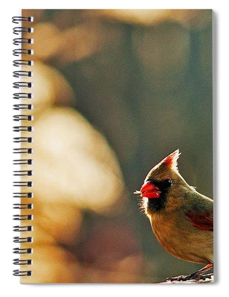 Mouthful Spiral Notebook