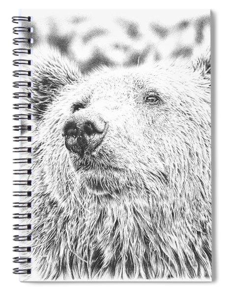 Mr. Bear Spiral Notebook