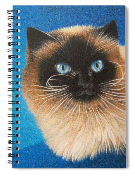 Mr. Blue Spiral Notebook