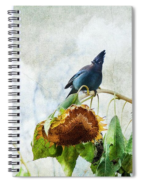 Mr Jay And The Sunflowers Spiral Notebook