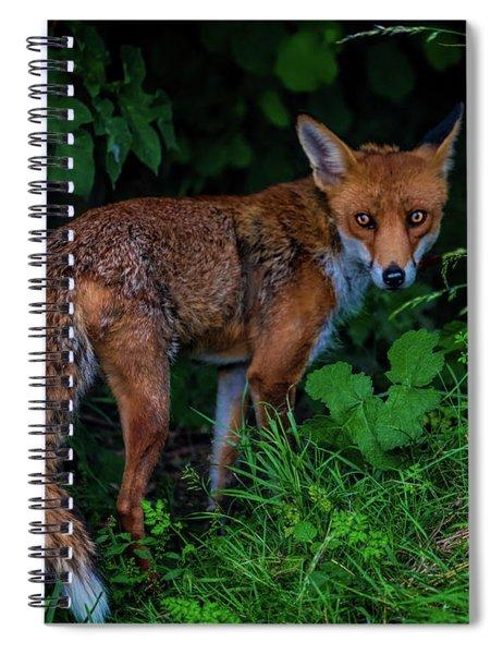 Mrs Arianna Fox Spiral Notebook