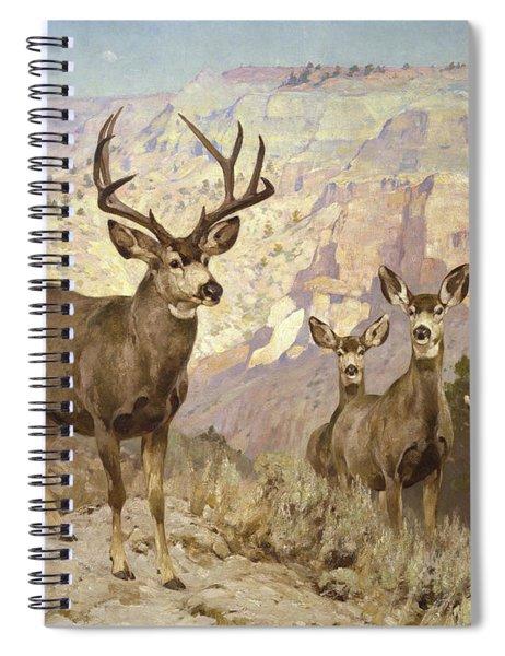Mule Deer In The Badlands, Dawson County, Montana Spiral Notebook