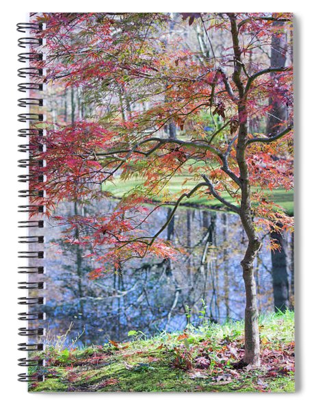 Multi Color Japanese Maple Spiral Notebook