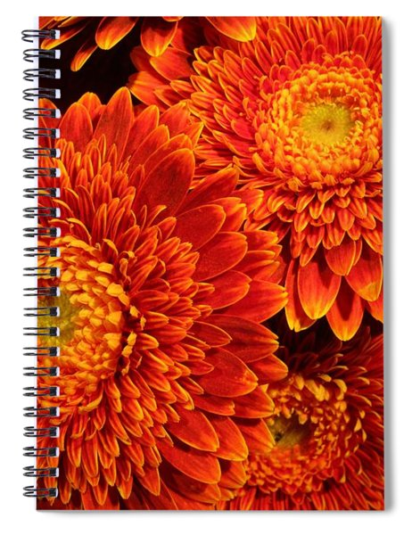 Mums In Flames Spiral Notebook