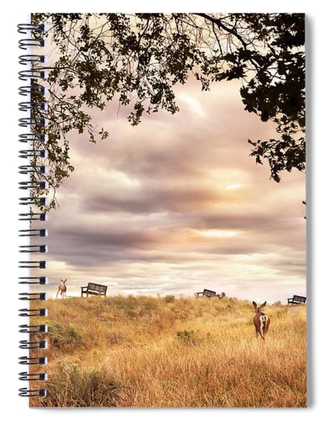 Munson Morning Spiral Notebook