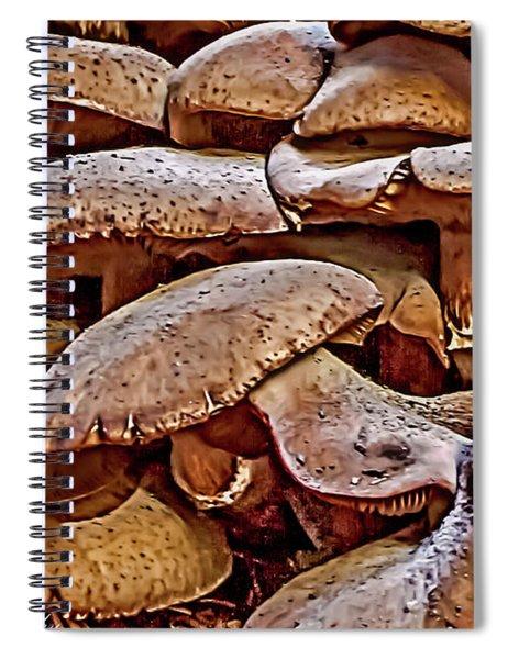 Mushroom Colony Spiral Notebook