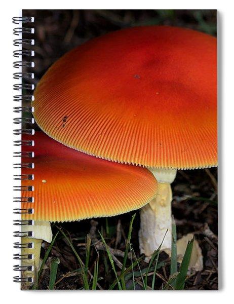 Mushroom Love Spiral Notebook