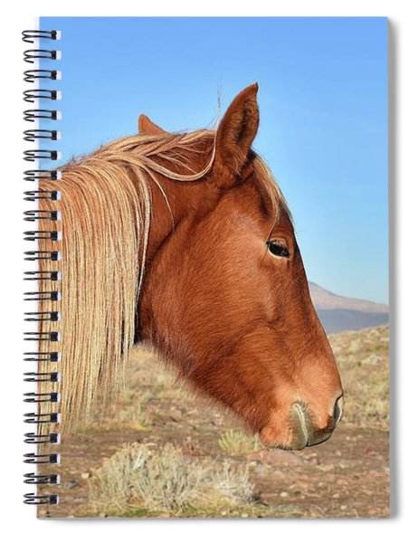 Mustang Mare Spiral Notebook