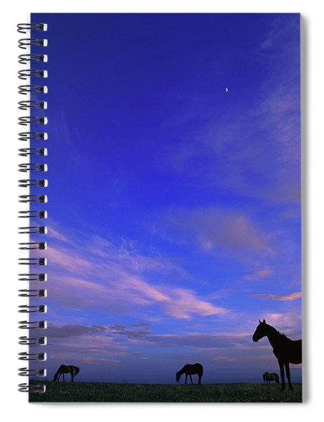 Mustangs And Evening Sky Spiral Notebook