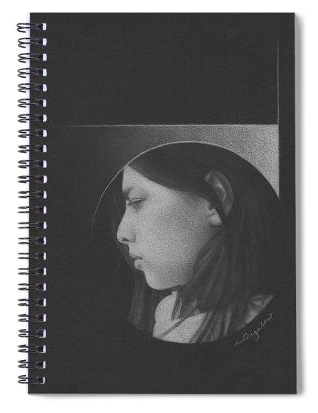 Muted Shadow No. 1 Spiral Notebook
