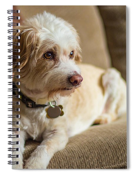 My Best Friend Spiral Notebook
