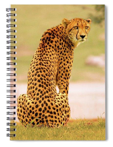 My Cheetah Spiral Notebook