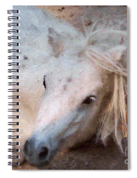 My Little Horse Spiral Notebook