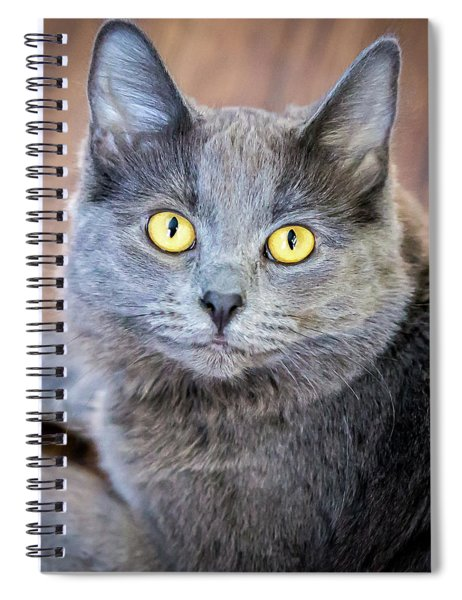 My Name Is Smokey Spiral Notebook