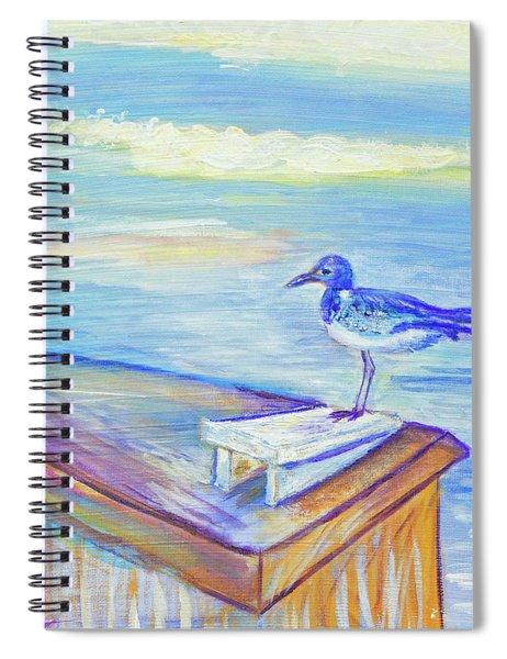 My Tern 3 Spiral Notebook
