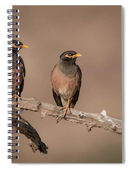 Myna Pair Spiral Notebook