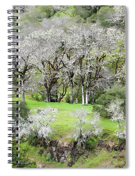 Mysterious Landscape In Sonoma County Spiral Notebook