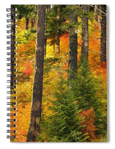 N W Autumn Spiral Notebook