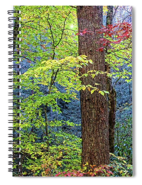 Nantahala Spiral Notebook