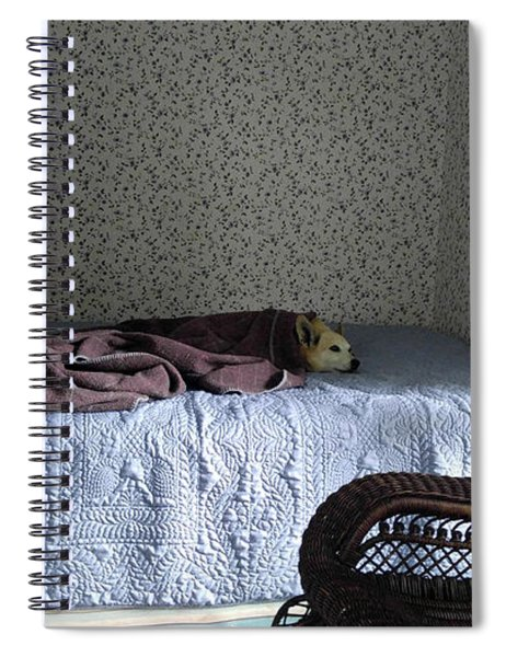 Napping At The Farmhouse Spiral Notebook