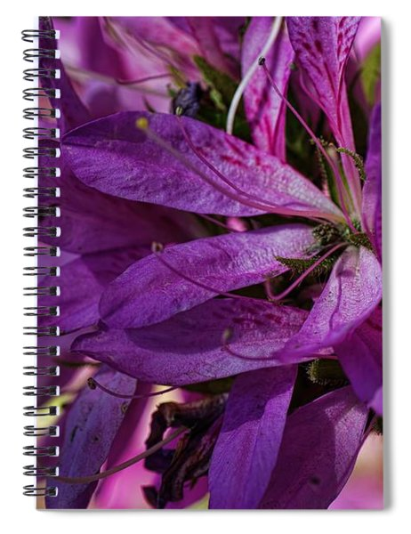 Native Long Petals Spiral Notebook