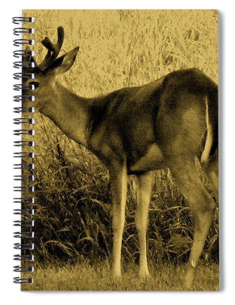 Natural Beauty- Vintage Version Spiral Notebook