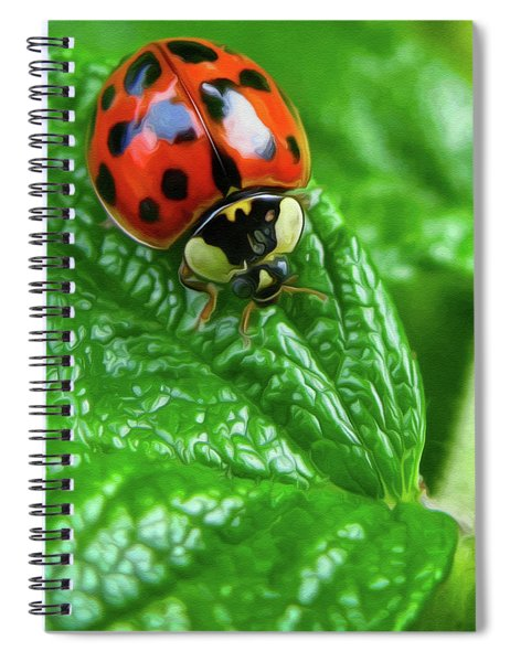 Natural Color Contrast Spiral Notebook