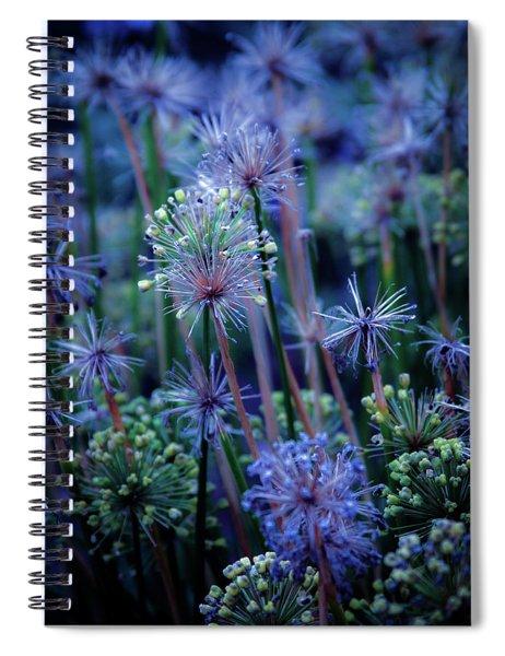 Natural Fireworks 4791 H_2 Spiral Notebook