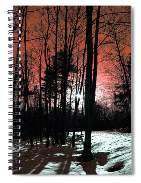 Nature Of Wood Spiral Notebook